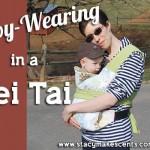 Babywearing in a Mei Tai