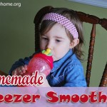 Homemade Freezer Smoothies