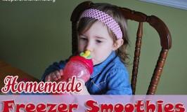 Homemade Freezer Smoothies