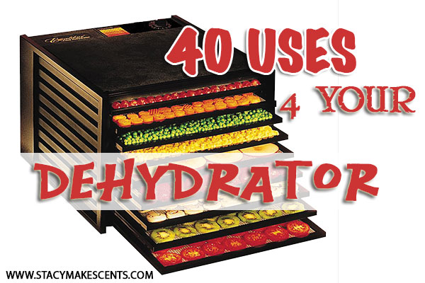 uses-for-your-dehydrator
