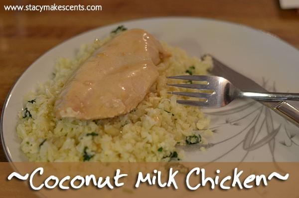 Coconut Milk Chicken + Allergen Friendly Cookbook - Humorous ...