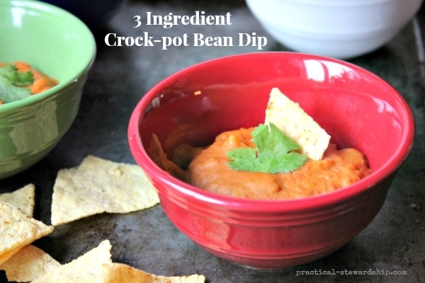 3-Ingredient-Crock-pot-Bean-Dip
