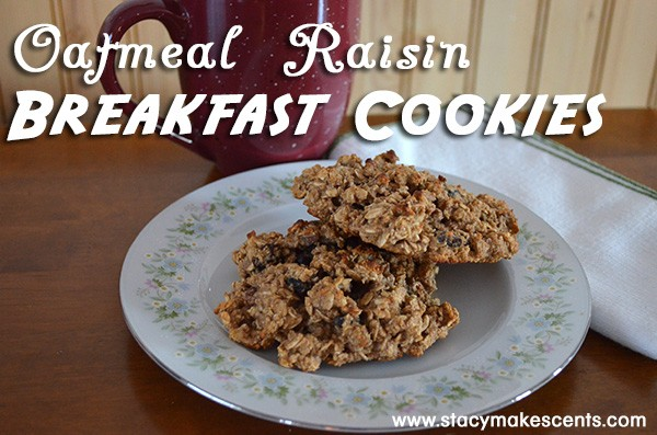 Oatmeal-Raisin-Breakfast-Cookies