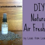 Natural Air Freshener Recipe {That Really Works}