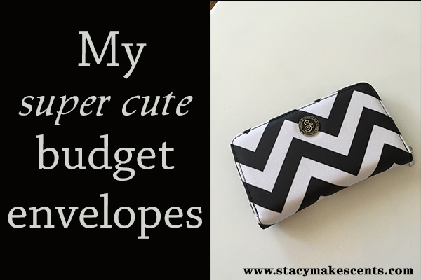 Savvy Cents budget envelopes - a cute way to carry cash!