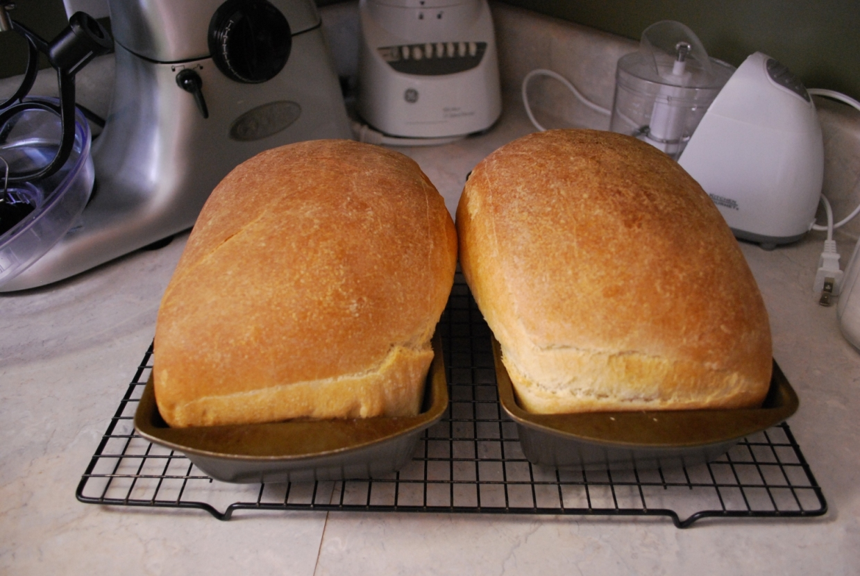 Kitchen Aid Mixer Bread Humorous Homemaking