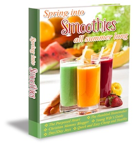 Spring into Smoothies 3D Cover Small